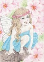 Cherry Blossom Pink - ACEO by MayumiOgihara