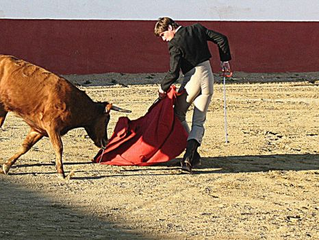 handsome bullfighter in action.. by Oath666