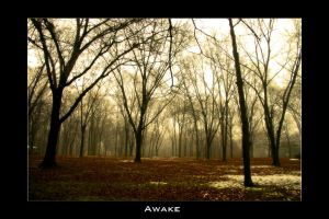 Awake by isuandrew