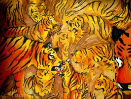 Tigers by Truro