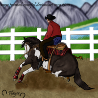 Player-HSSS Reined Cowhorse by painted-cowgirl