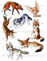 Family Canidae Sticker Set 1 by LastMorbidRose