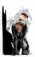 Black Cat by EmegE