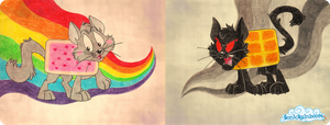 Nyan Cat and Tac Nayn. by LucenteNuaro