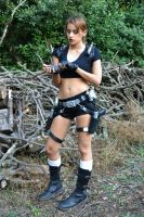 Tomb Raider Legend - game: paused by FuinurCroft