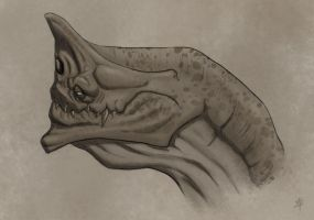 Creature Head Concept by rpowell77