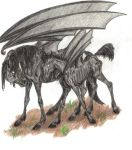 Thestral Baby by ResidualHaunt