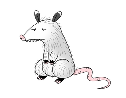 Opossum by Spice5400