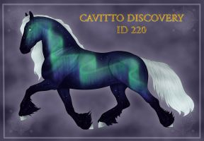 Cavitto Discovery ID 220 by Cariannarz