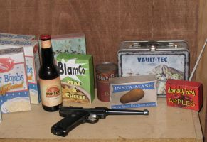 household fallout props by emptysamurai