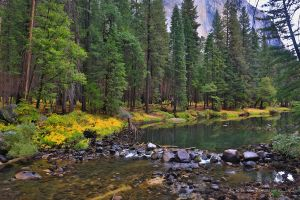 Autumn Lights in Yosemite  29 by Mac-Wiz