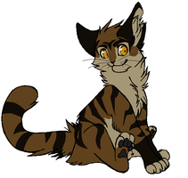 Tigerclaw. Just Tigerclaw by TobyKitten