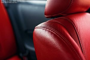 2005 Mustang Detail II by notbland