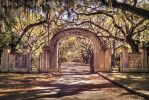 The entrance to Wormsloe Plantation_1 by PhotoshopGirl29