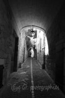 uzes by EVEGR