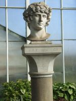 Roman Head by TimeWizardStock