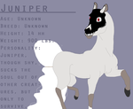 Juniper Reference Sheet by flawless-brony
