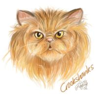 Crookshanks by jialing