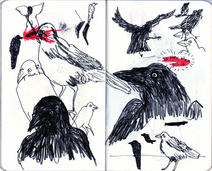 crows by wolfship