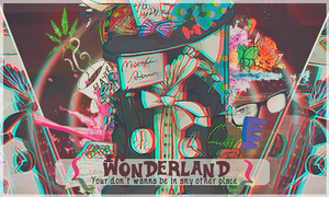 Wonderland by FlowEditions