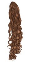Curly Pony Tail by hellonlegs