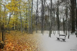Autumn and Winter by BenHeine