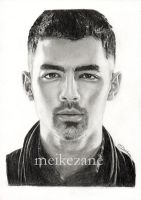 Joe Jonas - Fastlife by MeikeZane