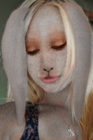 Rabbit Morph by TwoPaperBags