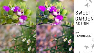 Sweet Garden Photoshop Action by FlabnBone