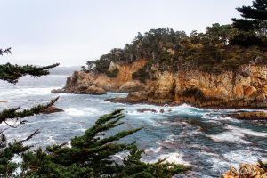 Point Lobos -2 by KBL3S