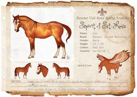 The Spirit of St. Louis by WesternSpice