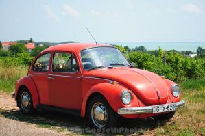 My Beetle and the Balaton by Seth890603