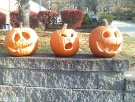 Three Little Pumpkins... by ClockCollector