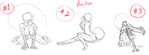 OC-Auction by Ligax