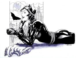 Batman Week Catwoman SOTD by RobertAtkins