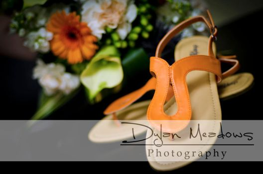 Wedding - Sept 2011 - 01 by dylanmeadows