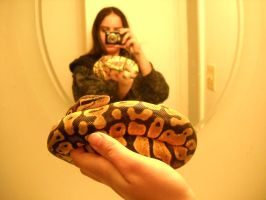 Pastel ball python an me by CrazyViper