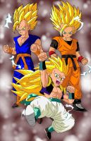 Dbz Oc's : Result of training by caractrer-manga