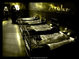 The Asylum by hellvoyager666