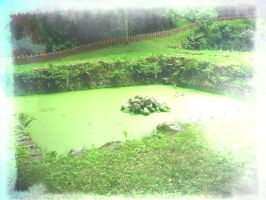 Death Pond and See by Sighild