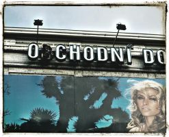 obchodni do girl by solo-talent