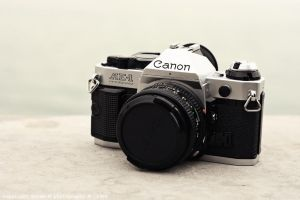 CANON by sara-m