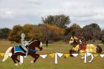 TIWHA Jousting Round 4 by bovidaeloony
