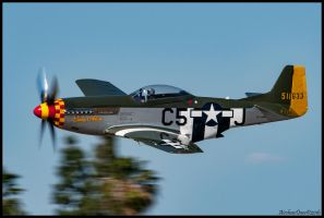 Lady Alice, 511633 Riverside 2016 by AirshowDave