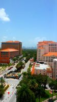 Miami Summer- East is blue by MARCO-E