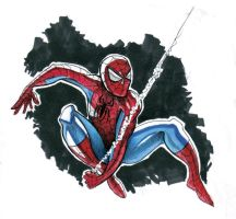 Spiderman by rz250
