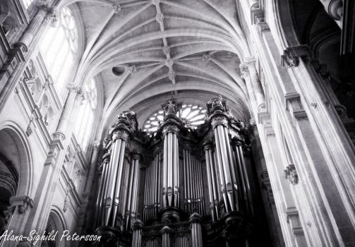 Up to the Organ by Sighild