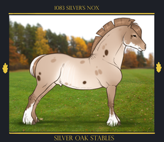 1083 Silver's Nox by SilveringOak