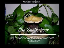 Mushroom and Ivy Stock Pack by FairieGoodMother