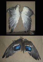 duck wings by Tricksters-Taxidermy